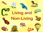 living-and-non-living-things-downloads-5876-recommended-14-bndhx4-clipart